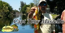Capt Tony Masiello - Peacock Bass Fishing Guides