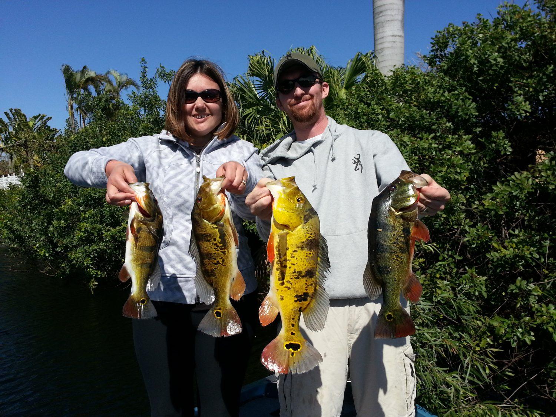 Bass Fishing in Miami