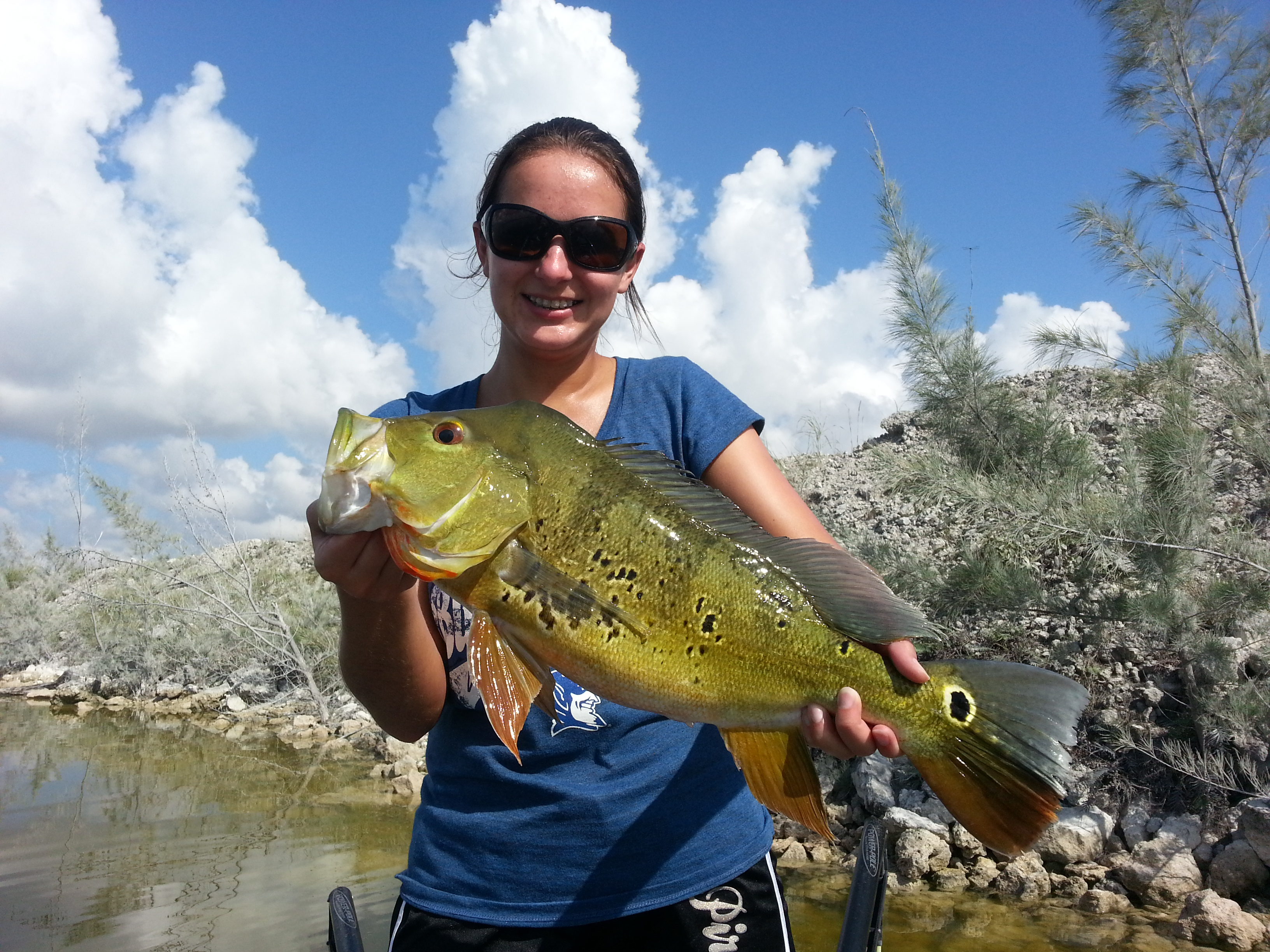 Looking for adventures do in miami florida peacock bass for Peacock bass fishing miami