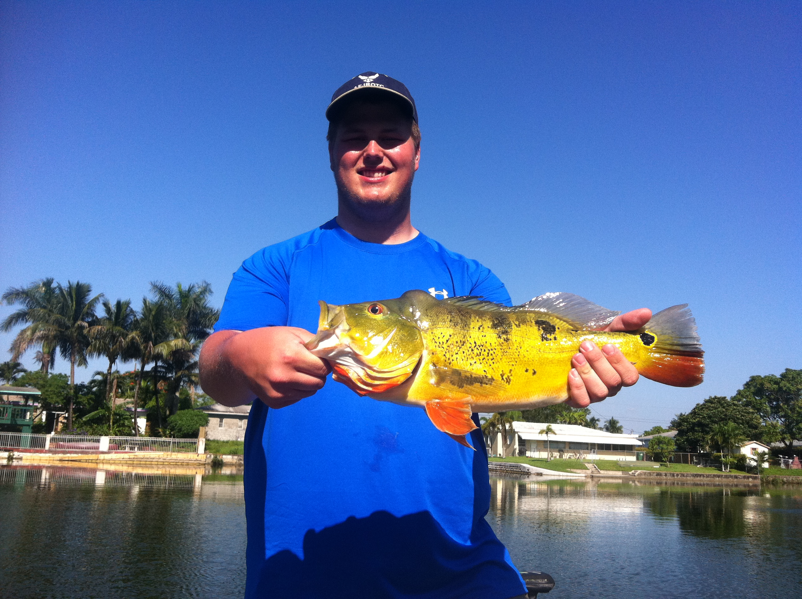 how to catch peacock bass in florida